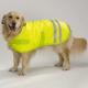 Hondenjasjes en veiligheid